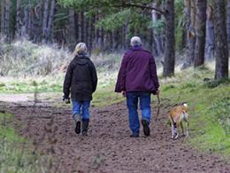 People walking a dog