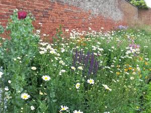 Chantry walled garden