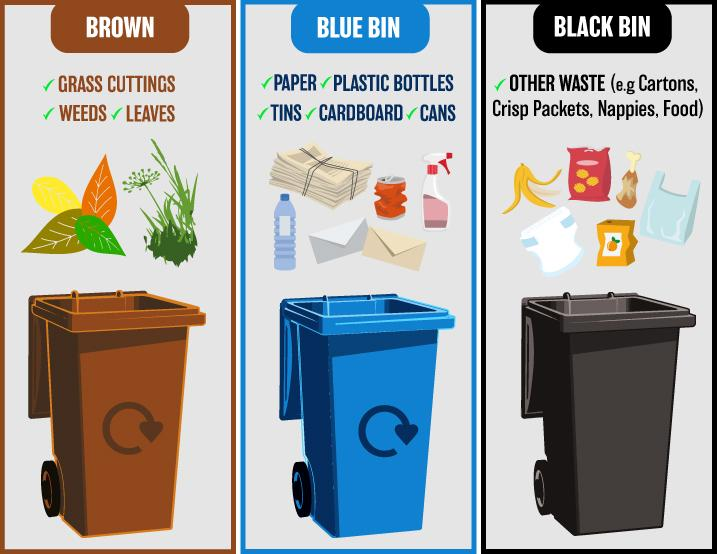 Graphic showing you what can go in your brown, blue and black bins